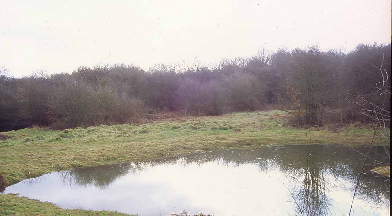 Rusthill Common