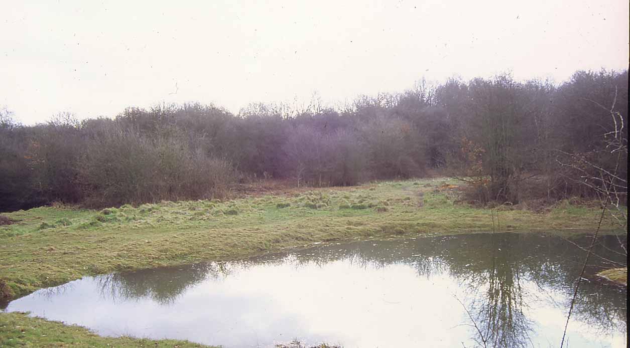 Rusthill Common